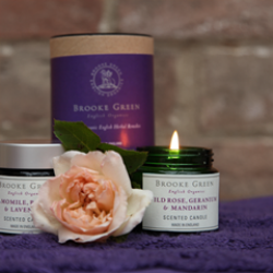 Brooke Green Remedies Wild Rose, Geranium & Mandarin Travel Candle