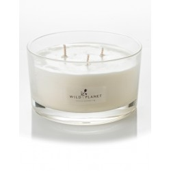 Wild Planet Midsummer 3 Wick Scented Candle in Gift Box 350g